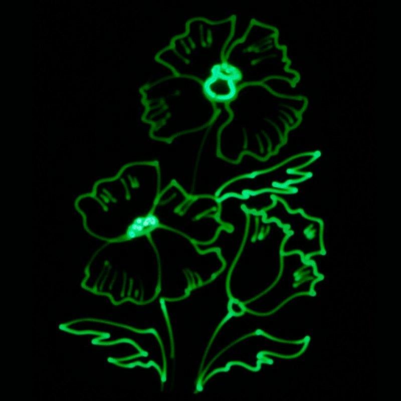Рисунок светом Цветок